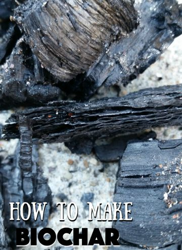 How to make Biochar for your garden soil
