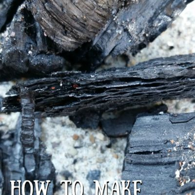 How To Make Biochar for Improved Garden Soil