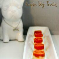 Pumpkin Yogurt Easy Frozen Dog Treats Recipe
