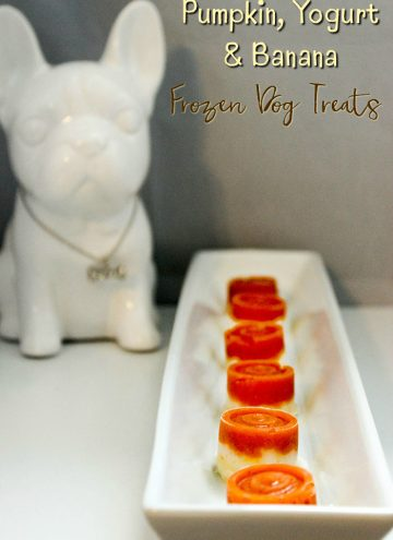 Frozen Dog Treats Recipe – Pumpkin, Yogurt, and Banana