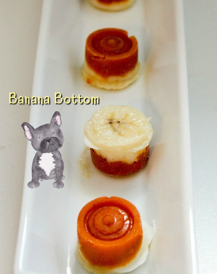 Pumpkin yogurt frozen dog treats with banana bottom