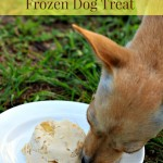 Frozen Banana and Peanut Butter Dog Treat Recipe