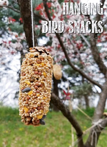 DIY Hanging Bird Snacks using Pine Cones - Earth Day Activities kids love for any day!