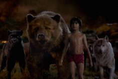 The Jungle Book Characters I Like the Most In the New Film