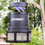 DYNATRAP Insect Trap to Reclaim Your Yard