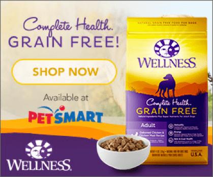 Grain Free Dry Dog Food is at PetSmart #GrainFreeForMe