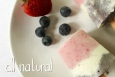 Fun Summer Treats Recipe – All Natural Ice Cream Pops