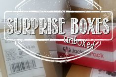 Round 4 – Surprise Box Unboxings