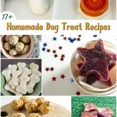 17+ Homemade Dog Treats Recipe Roundup