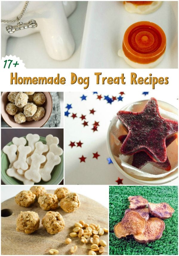 17+ Homemade Dog Treats Recipe Roundup