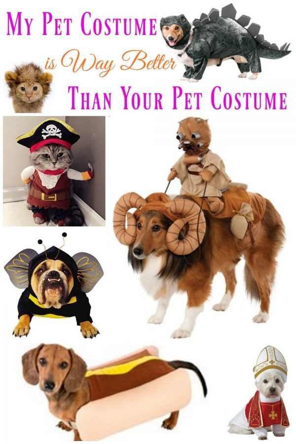 My Pet Costume is Way Better Than Your Pet Costume