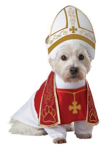 Holy Hound Dog Costume
