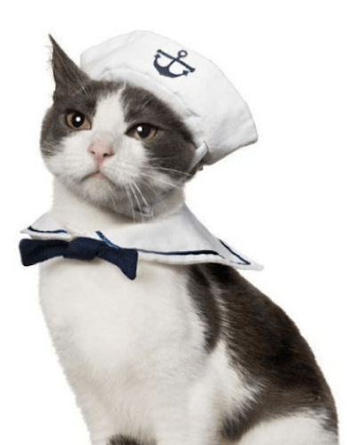 Cat Sailor Costume