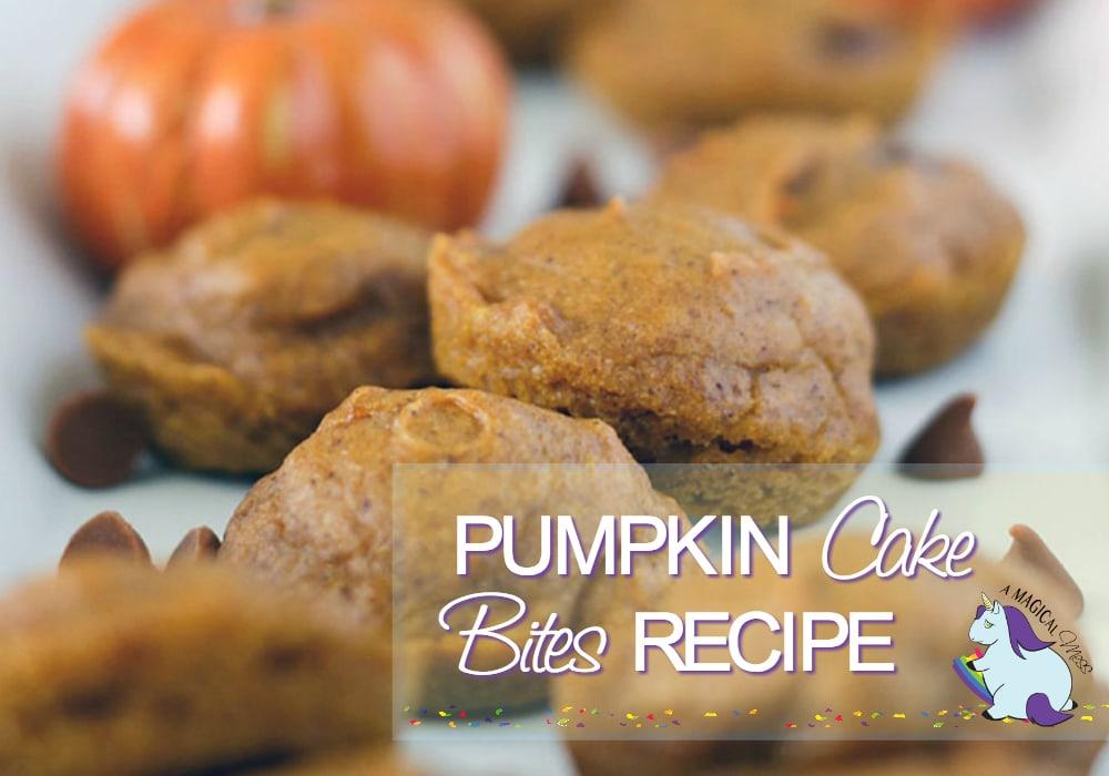 Mini Pumpkin Cake Bites Recipe with cinnamon chips