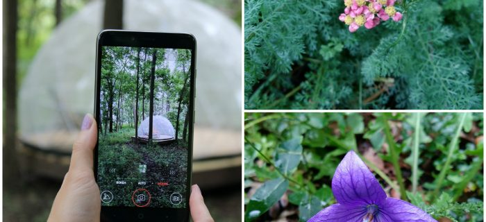 Affordable Phone with a Great Camera and Huge Screen