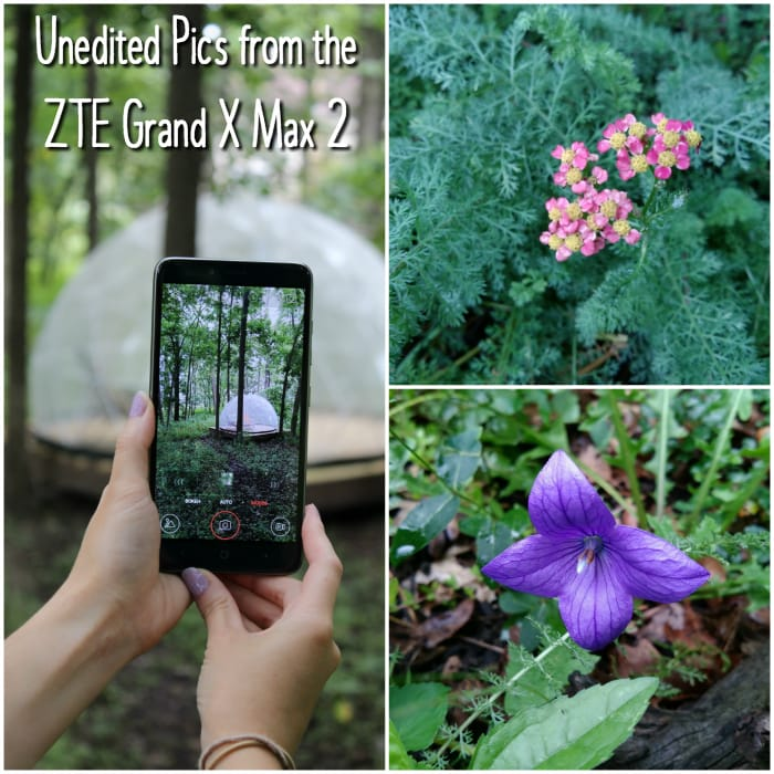Pictures taken with the ZTE Grand X Max 2 from Cricket Wireless