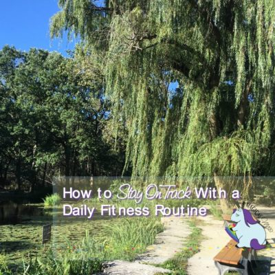 Daily Fitness Motivation – What I am Doing to Stay on Track