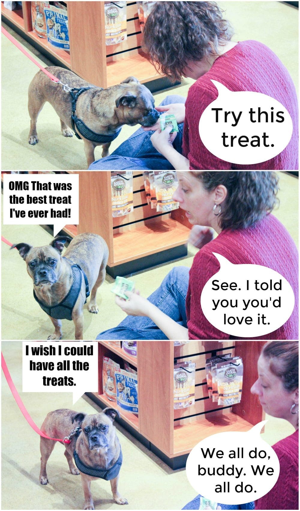 The Grump was given the best treat of his life at Kriser's Natural pet store. He made a new best friend.