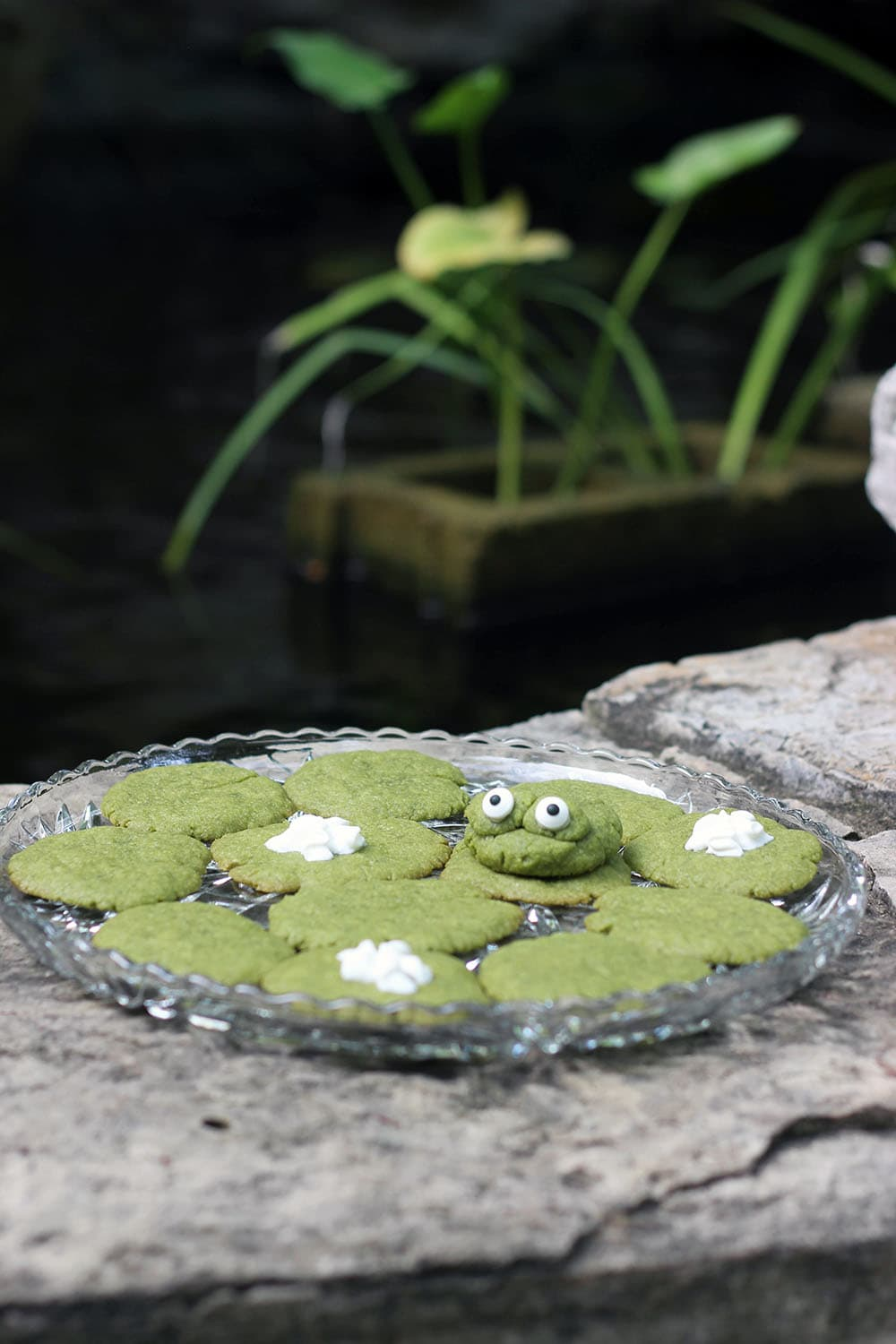 Green tea cookies shaped like lily pads next to a pond