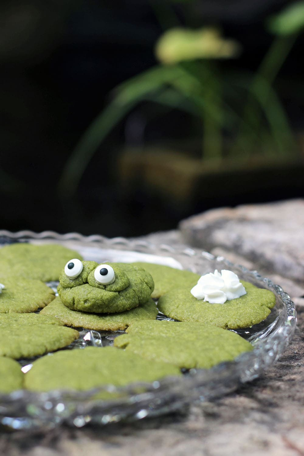 Matcha green tea sugar cookies recipe