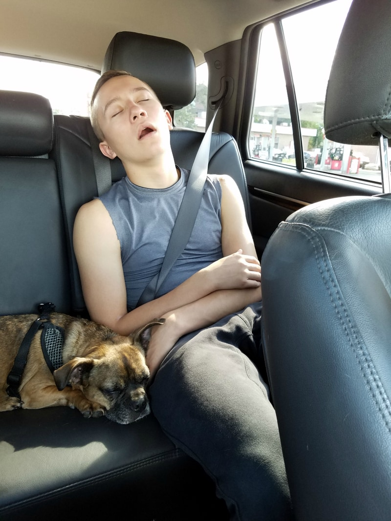 Successful outing equals sleeping passengers