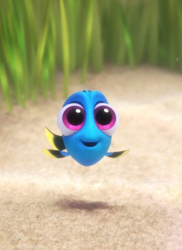 Best Way to Get Bonus Information on Finding Dory Characters