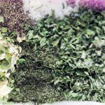 Dry Ranch Dressing Recipe Mix in Slider Bags
