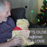 Best Gifts for Older Grandparents for Any Season #JoyForAll #IC AD