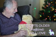 Best Gifts for Older Grandparents take Cannot Have Pets