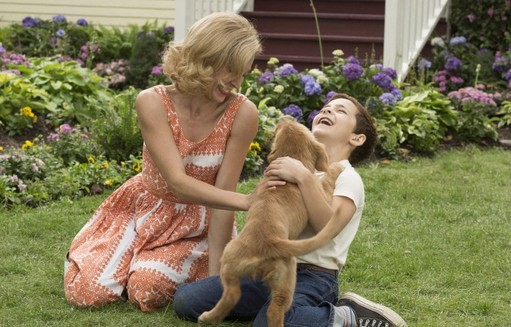 Woman and child in A Dog's Purpose movie