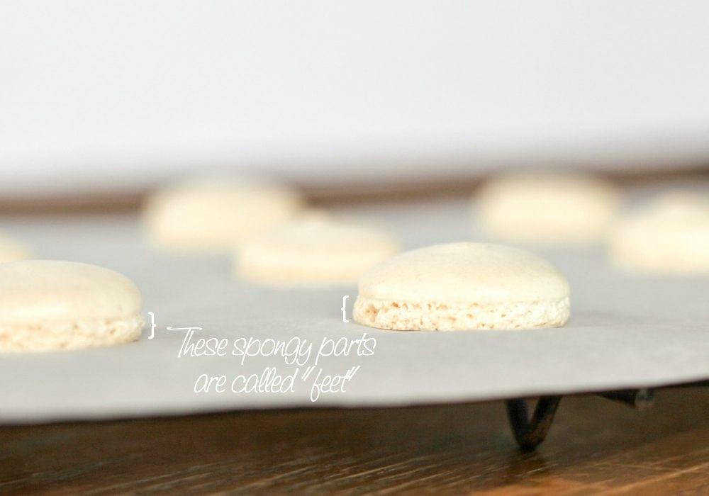 French macaron recipe - macaron feet