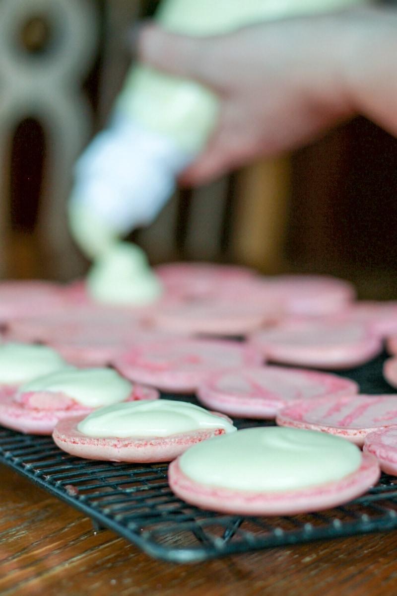 Pink French Macaron Recipe