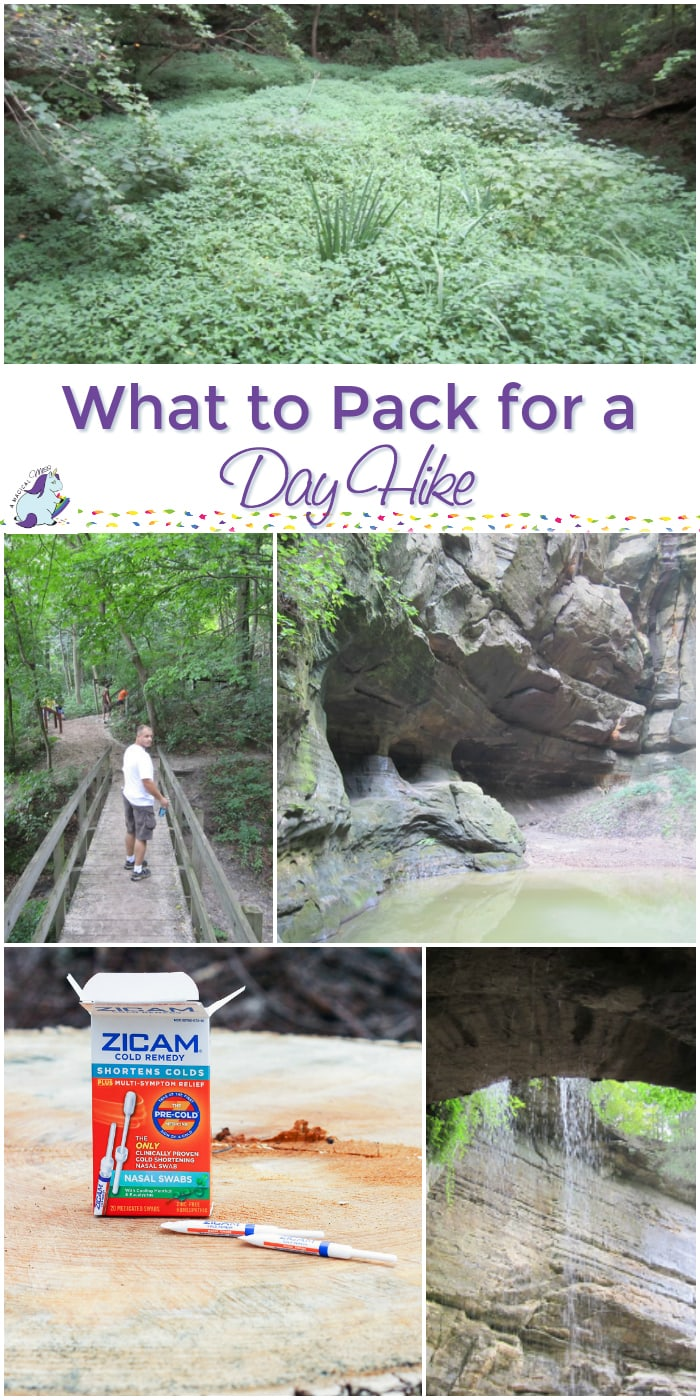 What to Pack for a Day Hike or Small Getaway