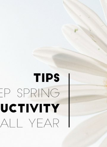 Don't Fall Back, Spring Ahead – Tips for Staying on a Productive Track