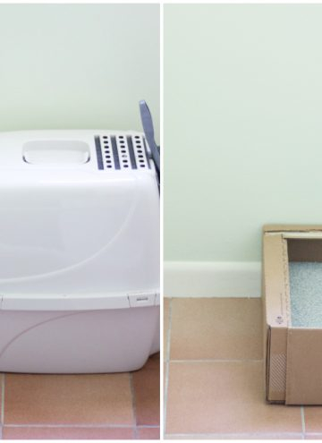 Tidy Cats Direct Monthly Litter Box Service – What a Difference!