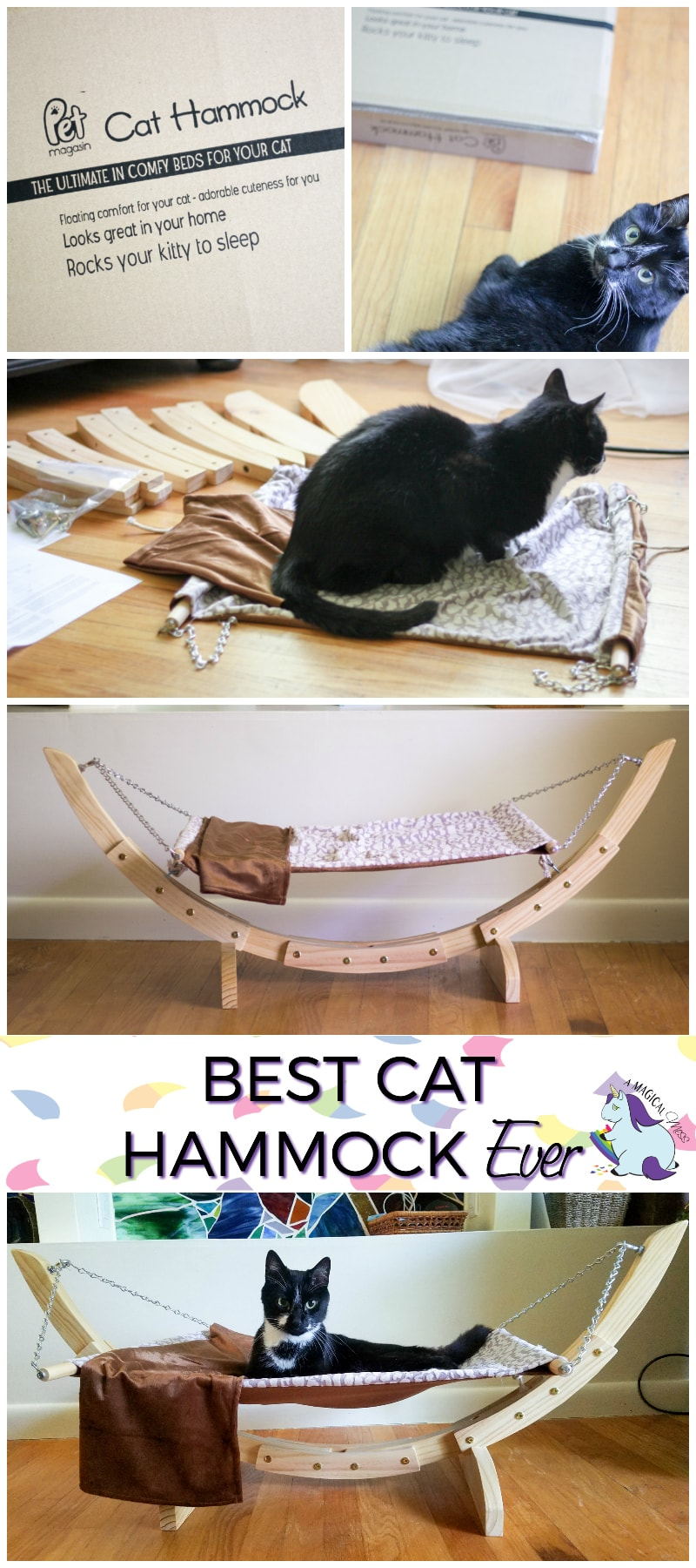 Best Hammock for Cats and How to Get Your Cat to Love It