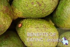 Benefits of Eating Avocado and Best Ways to Eat Avocados #LoveOneToday #IC AD