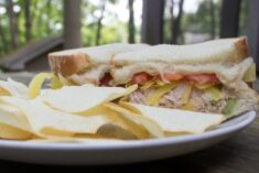 Best Tuna Salad Sandwich Recipe and Coupon