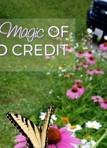 From Excellent to Good – How One of the Best Credit Repair Companies Helps Get You Back on Track