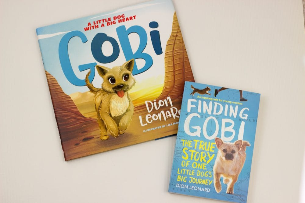 Finding Gobi Books - Gift Ideas for Family Fun with Kids - Indoor Edition