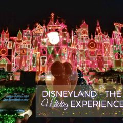 Top 5 Reasons to Visit Disneyland During Christmas