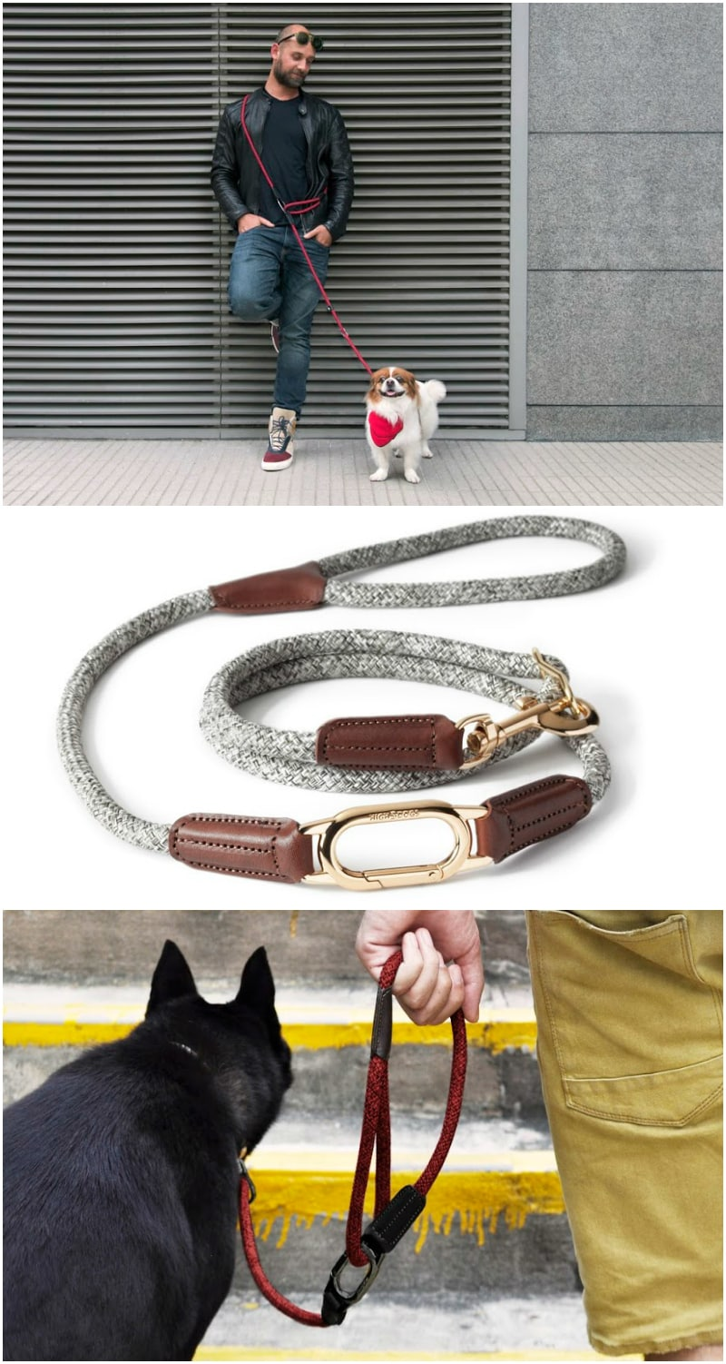 High5Dog CLIC Leash