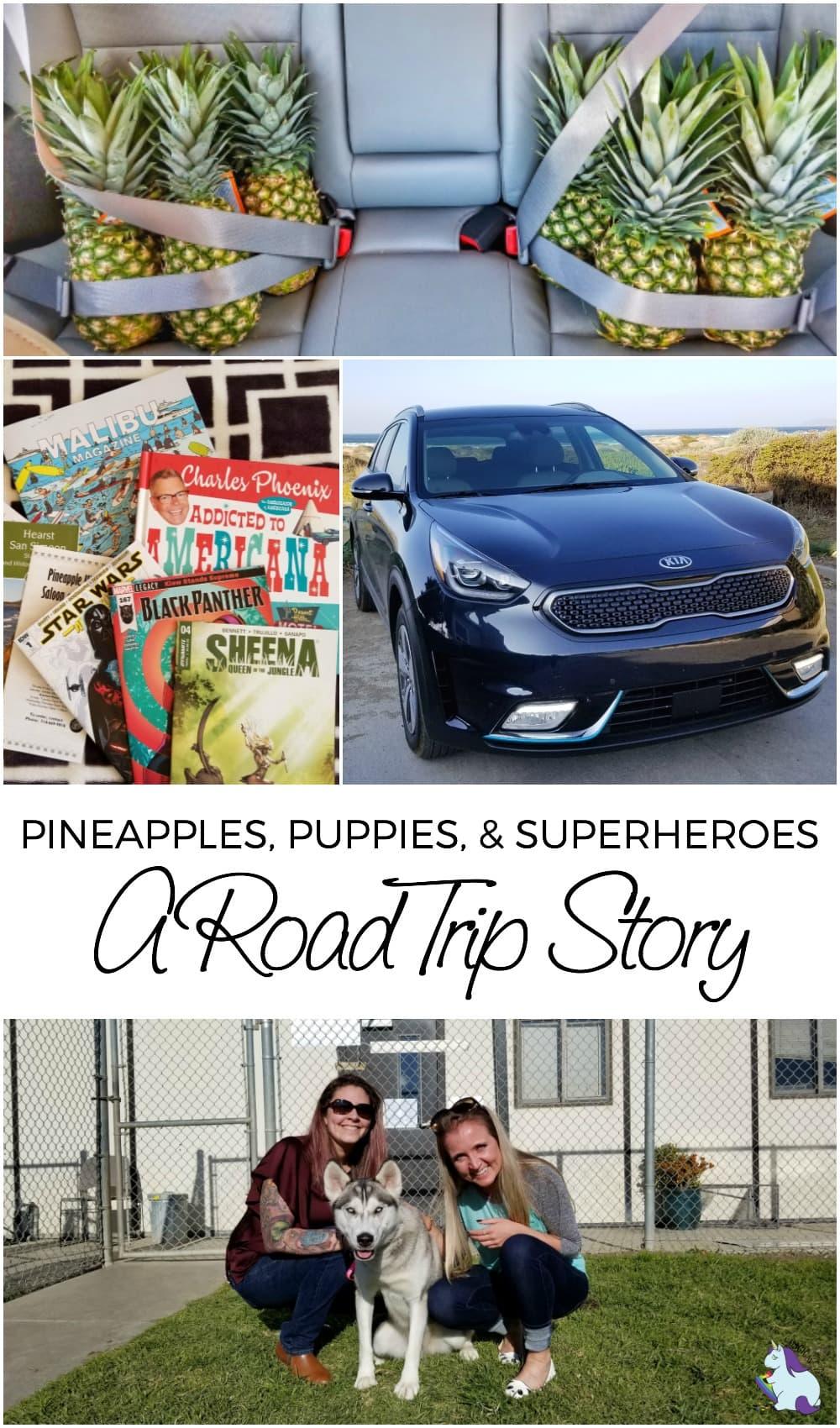 Kia Niro PHEV Road Trip - Full of Pineapples, Puppies, and Superheroes #NiroRoadTrip #KiaNiroPHEV #animals #travel #roadtrip #kia #california #adopt #giveback
