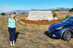 Kia Niro PHEV Road Trip – Full of Pineapples, Puppies, and Superheroes