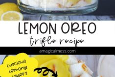 Layers of lemon in a trifle