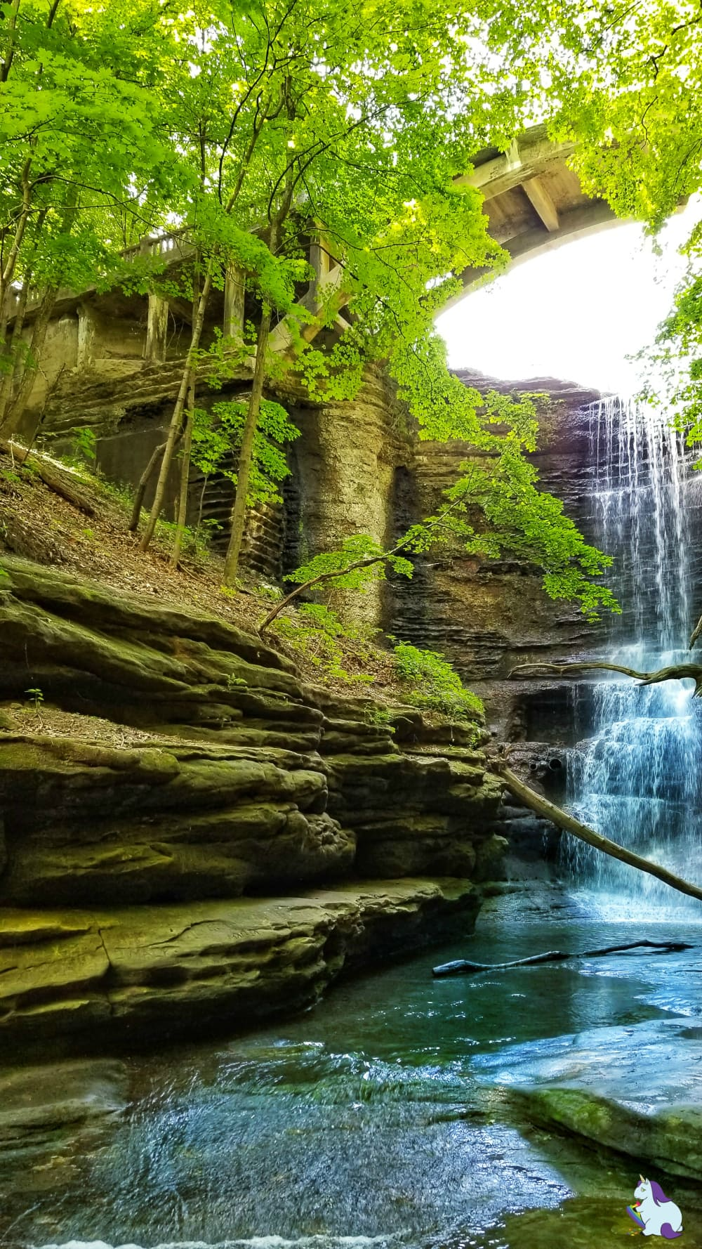 A Kia Sorento Road Trip with Wrinkles, Change, Discovery, and Waterfalls - Matthiessen State Park #utica #illinois #statepark #hiking #waterfalls