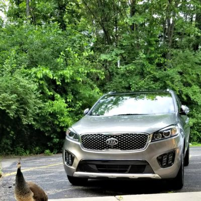 17 Irresistible Features in the 2018 Kia Sorento
