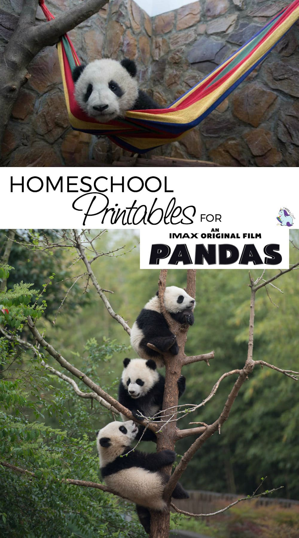 Homeschool printables to go with the new PANDAS movie
