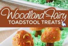 Woodland fairy Toadstool treats