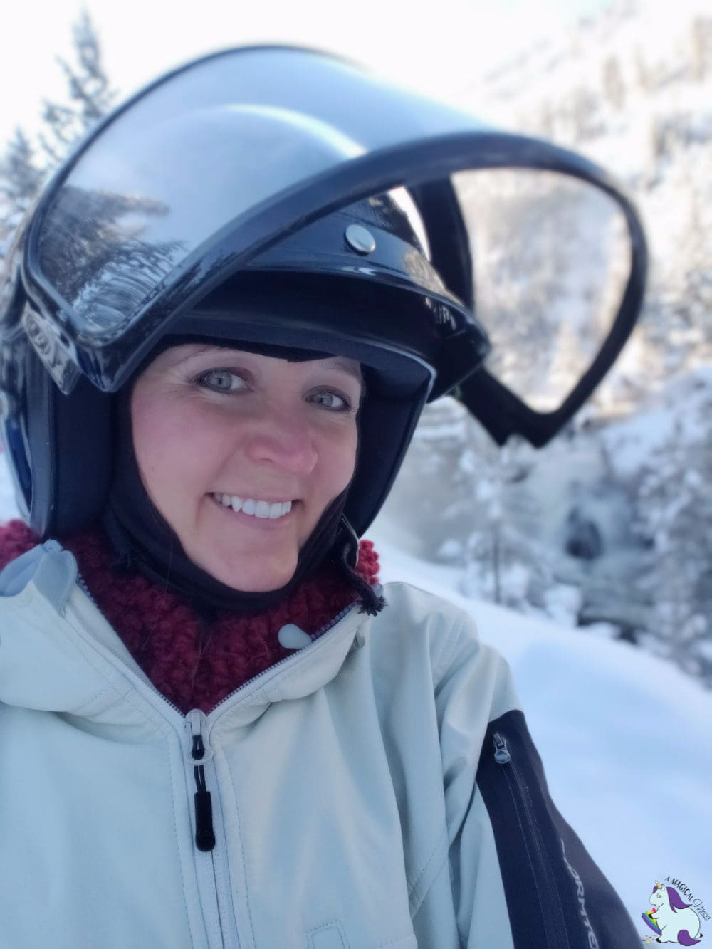 Snowmobiling through Yellowstone - Shelley VanWitzenburg